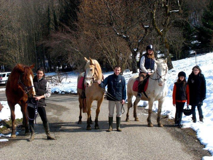Ca sent le printemps...alors on sort les chevaux!